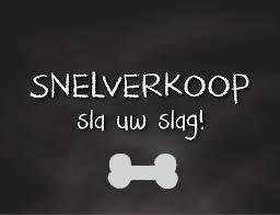 Snelverkoop