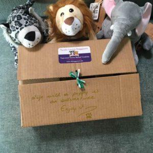 Welkom Puppy Box